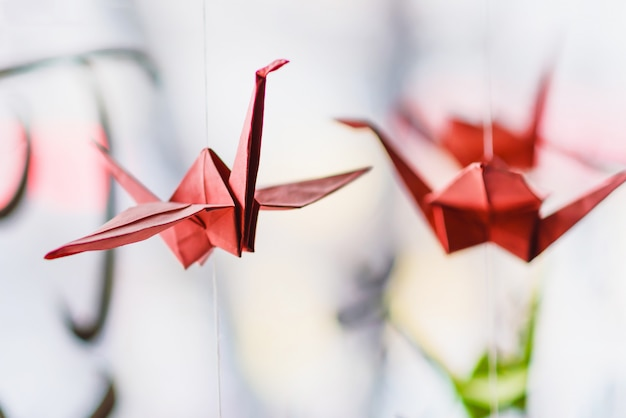 Origami hangs on the background of hieroglyphs Premium Photo
