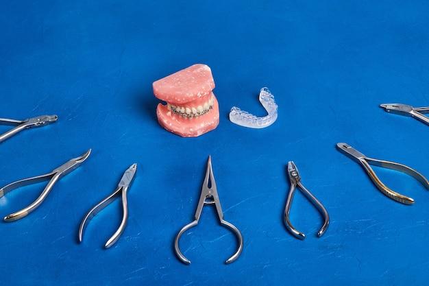Ортодонтическая модель и набор медицинских металлических ортодонтических инструментов на синем Premium Фотографии