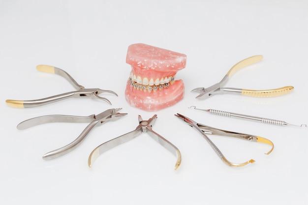 Orthodontic model and set of metallic medical orthodontic tools Premium Photo