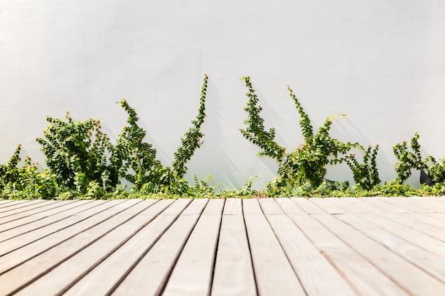 Outdoor Garden With Wooden Decking And Velcro Plants Premium Photo