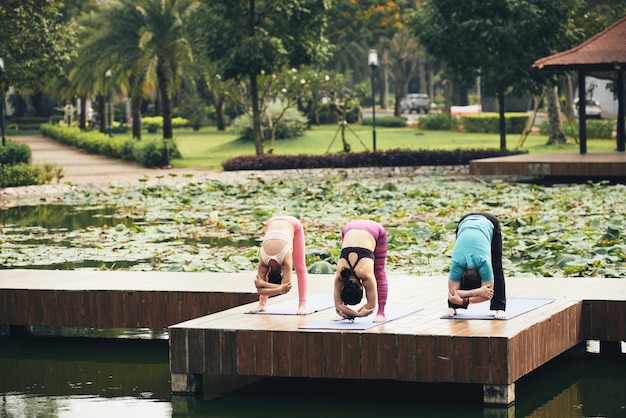 Outdoor stretching class Free Photo