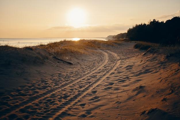 Открытый летний портрет следов шин на песчаном пляже с розоватым небом, морем и деревьями. безлюдный пляж с четырьмя следами от покрышек. природа, отдых, море и путешествия Бесплатные Фотографии