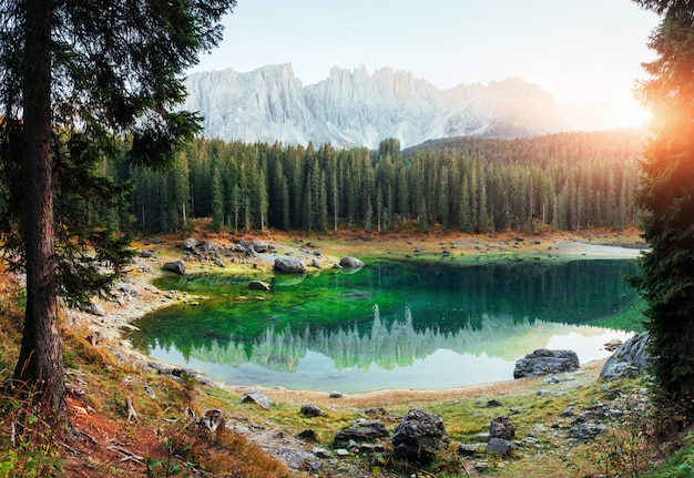 Outstanding background. autumn landscape with clear lake, fir forest and majestic mountains Premium Photo