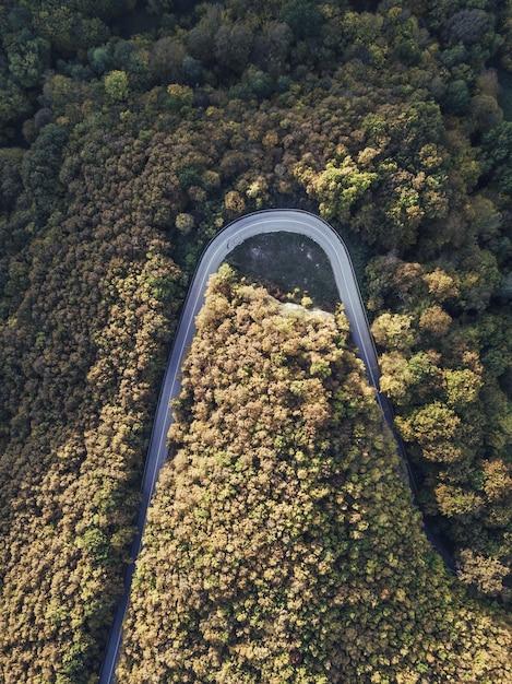森の丘の曲線道路のオーバーヘッド空中ショット 無料写真