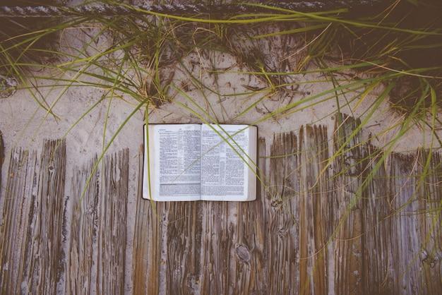 Colpo ambientale di una bibbia aperta su una via di legno vicino ad una riva sabbiosa e alle piante Foto Gratuite