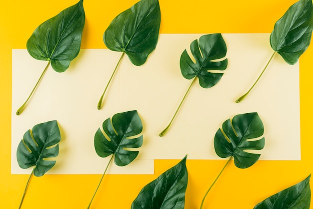 An overhead view of artificial leaves against paper and yellow background Free Photo