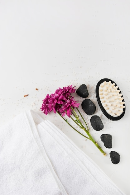 An overhead view of aster flowers; towel; spa stone and massage brush on salt over white background Free Photo