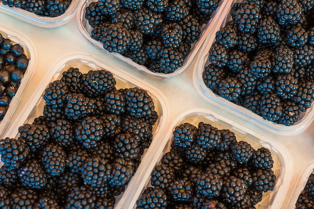 An overhead view of black berries in plastic transparent crates on white background Free Photo