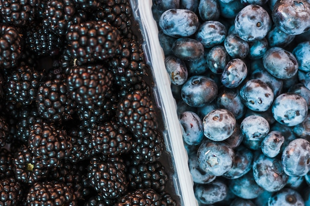 An overhead view of blackberries and blueberries Free Photo