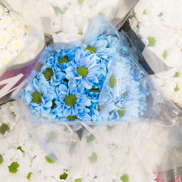 An overhead view of blue chamomile bouquet surrounded with white flower Free Photo