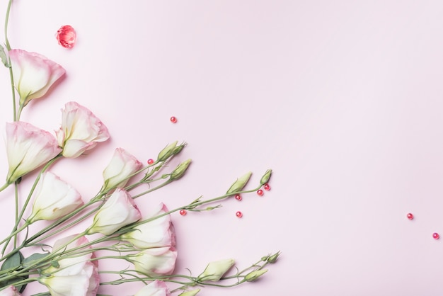 An overhead view of fresh flowers with red pearls on pink backdrop Free Photo