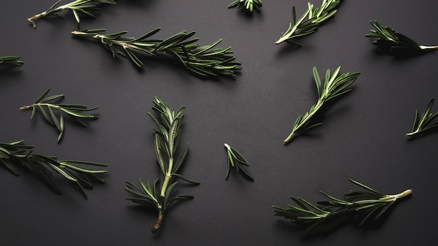 Overhead view of fresh green rosemary over dark backdrop Free Photo
