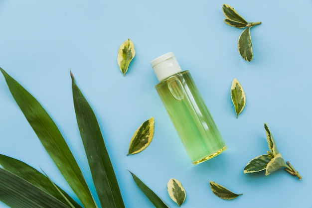 An overhead view of green spray bottle with green leaves on blue background Free Photo