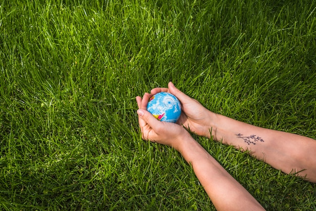 An overhead view of hands holding globe ball on green grass Free Photo