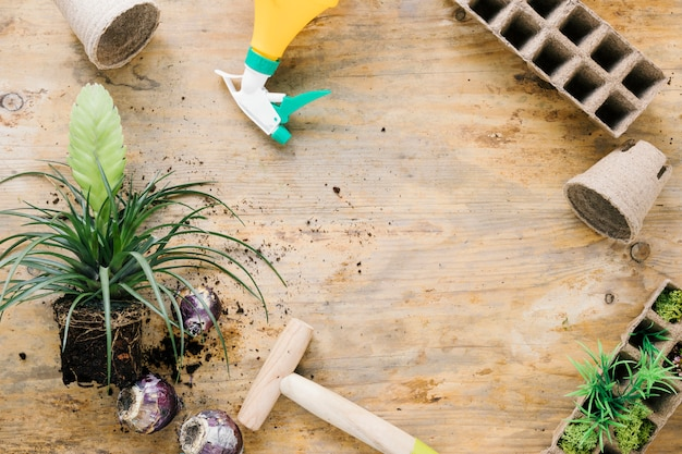Overhead view of peat tray; peat pot; dibber; onion; plant with soil on brown wooden surface Free Photo
