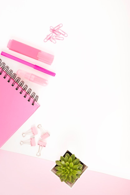 Overhead view of pink stationeries and potted plant on white cardboard paper Free Photo