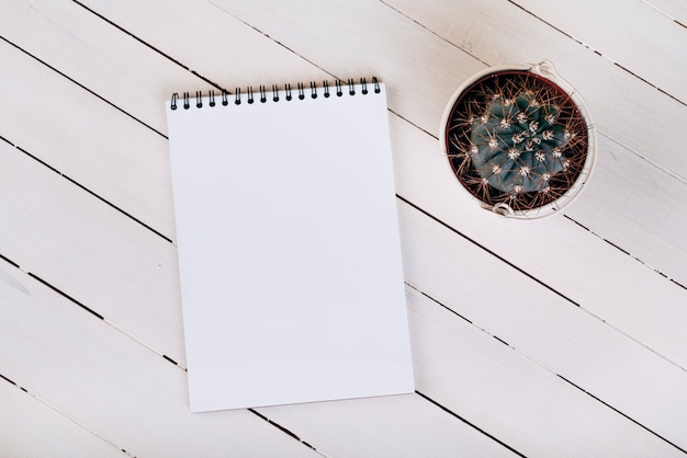An overhead view of thorny succulent plant near the white blank spiral notepad on wooden surface Free Photo