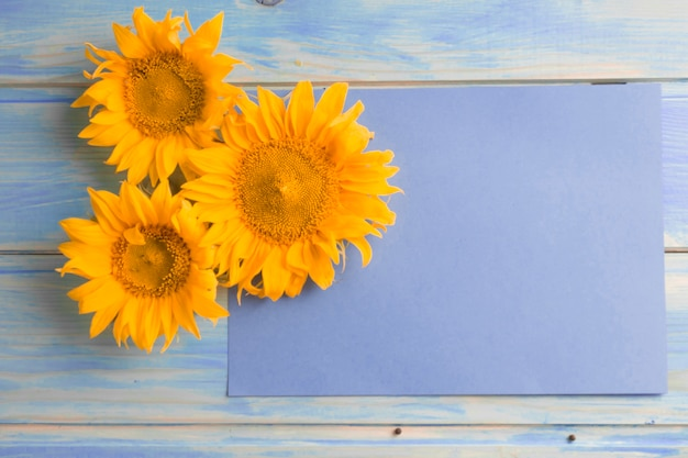 Overhead view of yellow sunflowers on blank paper over the wooden table Free Photo