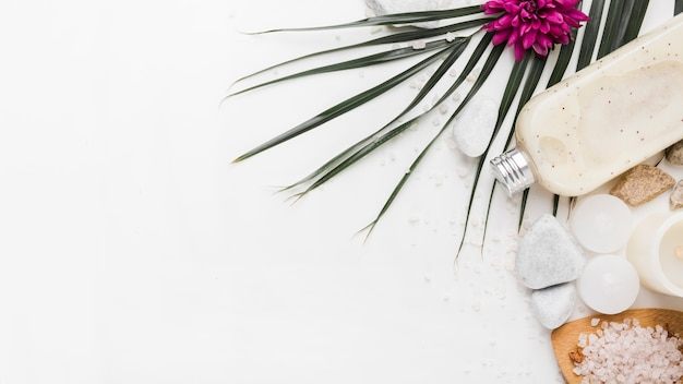 An overhead views of palm leaf; flower; stone; body scrub; candles and herbal salt on white backdrop Free Photo