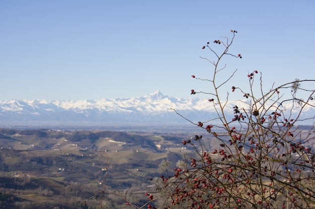 Affacciato sulla vista delle colline marroni con una catena montuosa ricoperta di neve sullo sfondo Foto Gratuite