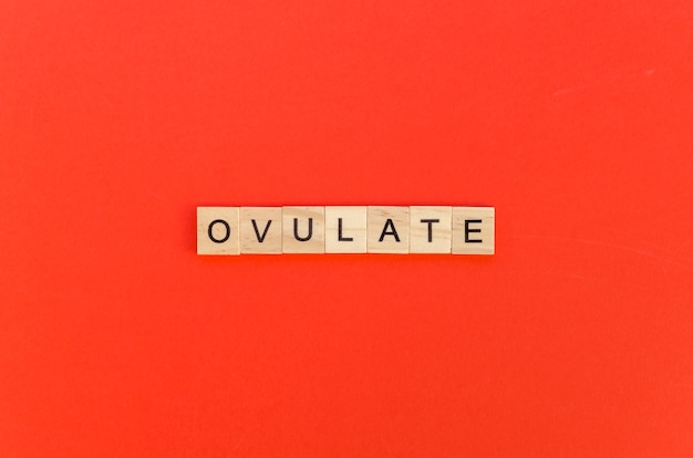 Ovulate word with scrabble letters on red background Free Photo