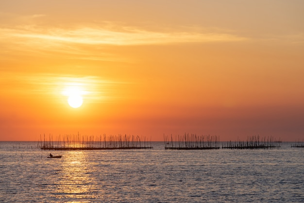 Oyster farm in the sea and beautiful sky sunset background Free Photo