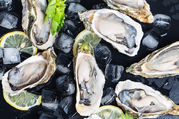 Oysters close up Free Photo