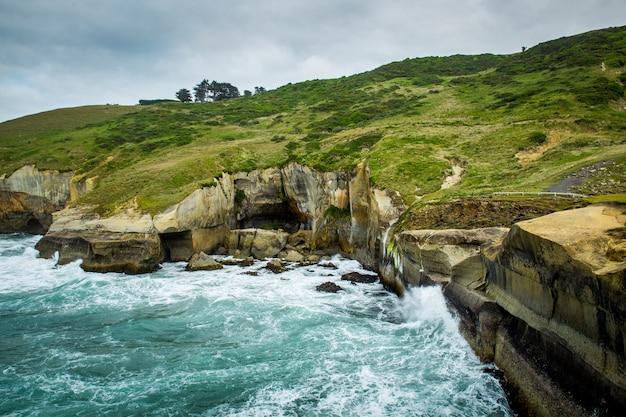 太平洋は、ニュージーランドのダニーデンのトンネルビーチで砂の崖に会います Premium写真