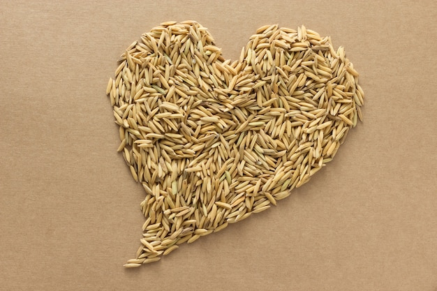 Paddy in heart shape Premium Photo