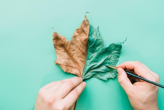 Painted leaf Free Photo