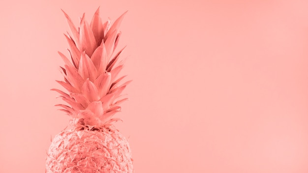 Painted pink pineapple on colored backdrop Free Photo