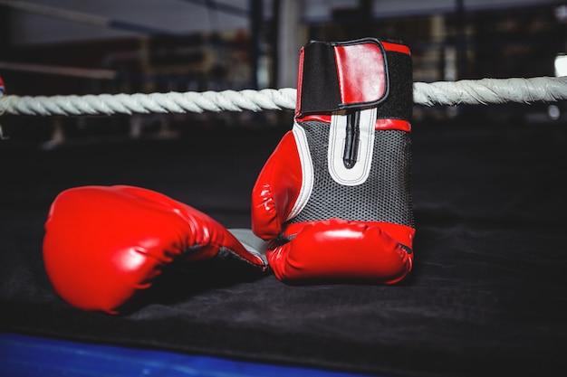 Paio di guantoni da boxe rossi Foto Gratuite