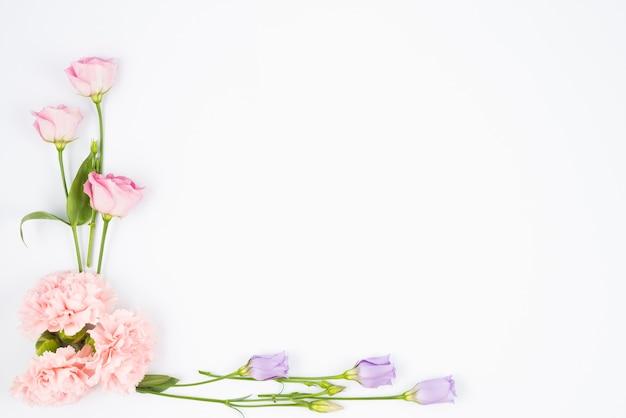 Pale flowers framing corner Free Photo
