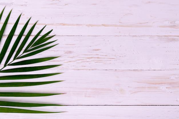 Palm coconut leaves on white wood Premium Photo