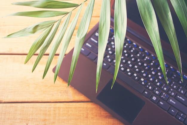 Palm leaf and laptop, marine theme, online work. copyspace. top view. Premium Photo