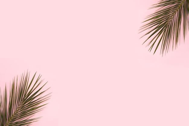 ピンクの背景の隅にヤシの葉 無料写真