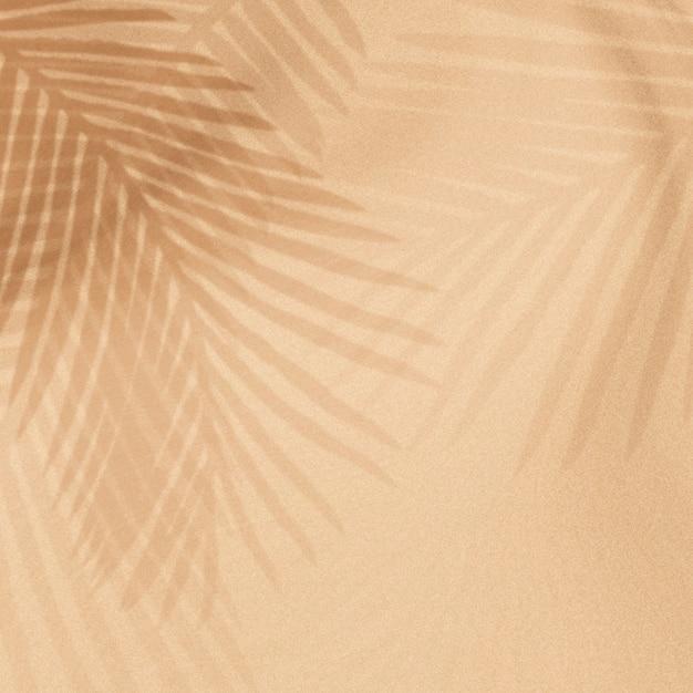 Ombra di foglie di palma su un beige Foto Gratuite