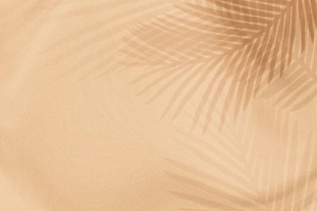 팜 잎 그림자는 베이지 색 무료 사진