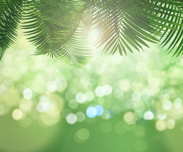 palm trees with bokeh effect photo