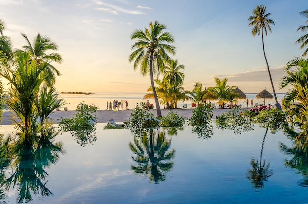 Palms over an infinity pool on the beach, french polynesia Premium Photo
