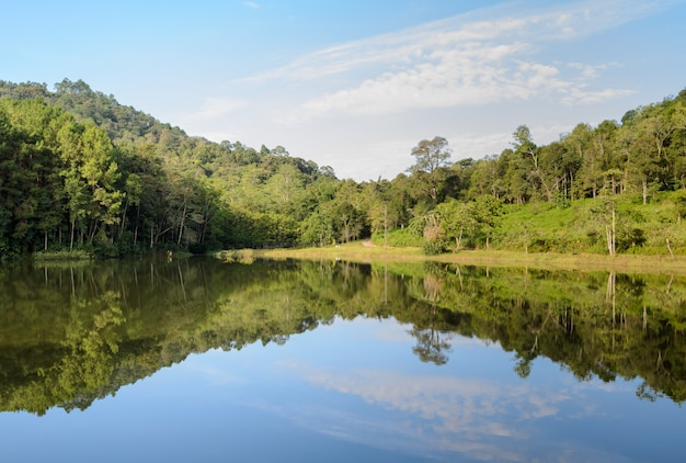 Pang oung national park, beautiful forest lake in the morning, mae hong son, thailand Premium Photo