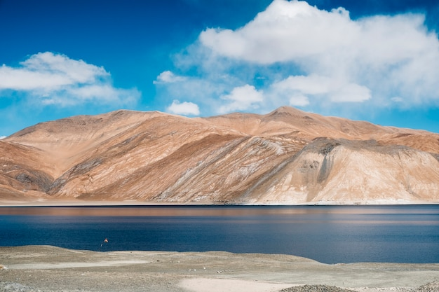 Pangong lake and mountain in leh ladakh, india Free Photo