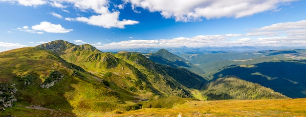 Panorama of carpathian mountains in summer sunny day. Premium Photo
