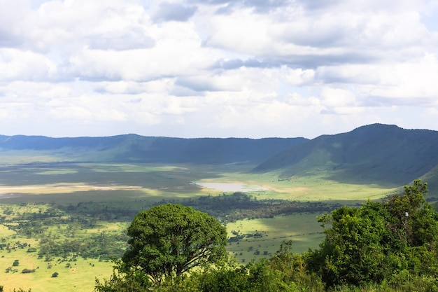 Панорама кратера нгоро-нгоро. озеро находится внутри кратера. танзания, африка Premium Фотографии