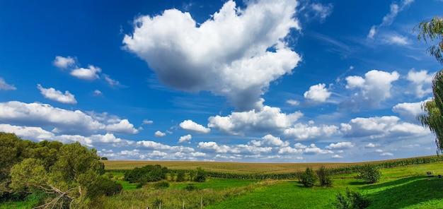 Панорамный пейзаж зеленого луга и голубого неба с облаками Premium Фотографии