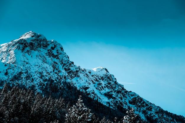 Colpo panoramico del picco di montagna frastagliato innevato con alberi alpini alla base della montagna Foto Gratuite