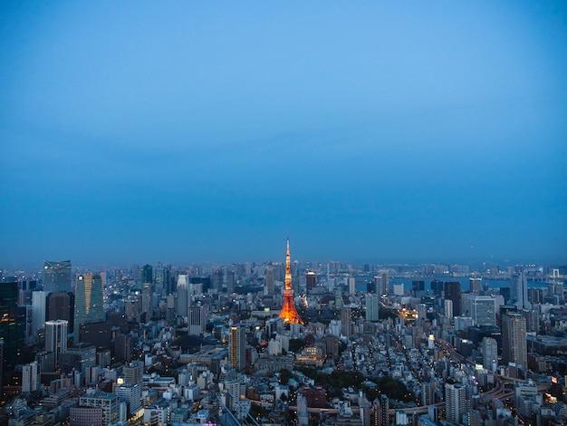 Панорамный закат вид на город токио. знаменитый токийский скайтри. Premium Фотографии