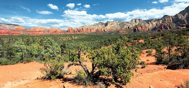 アリゾナ州セドナ近郊の有名な荒野のパノラマビュー Premium写真