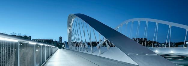 夜のシューマン橋のパノラマビュー、リヨン。 無料写真