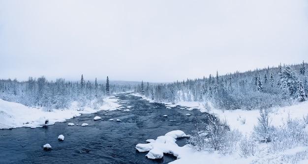 극지 날에 강 야생 겨울 눈 덮인 북부 숲의 파노라마 전망. 프리미엄 사진